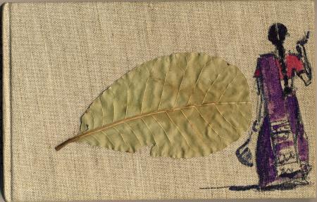 2005 Kerala